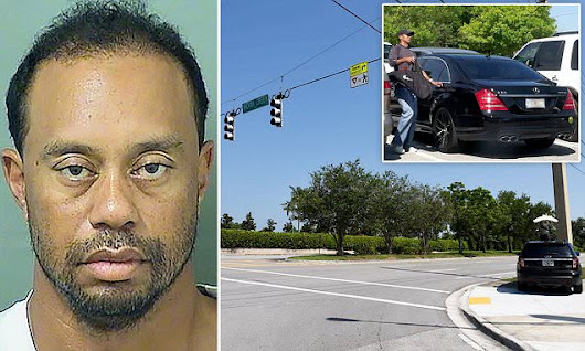 Tiger Woods was ASLEEP at the wheel during DUI arrest
