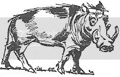 Scan_Pic0111.jpg warthog_clipart picture by sarahjmorriss