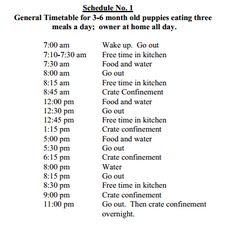 Dog Daily Schedule | Daily Agenda Calendar
