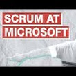 Scrum Log Jeff Sutherland: Facebook or Microsoft: Who Has the Best Daily Scrum?