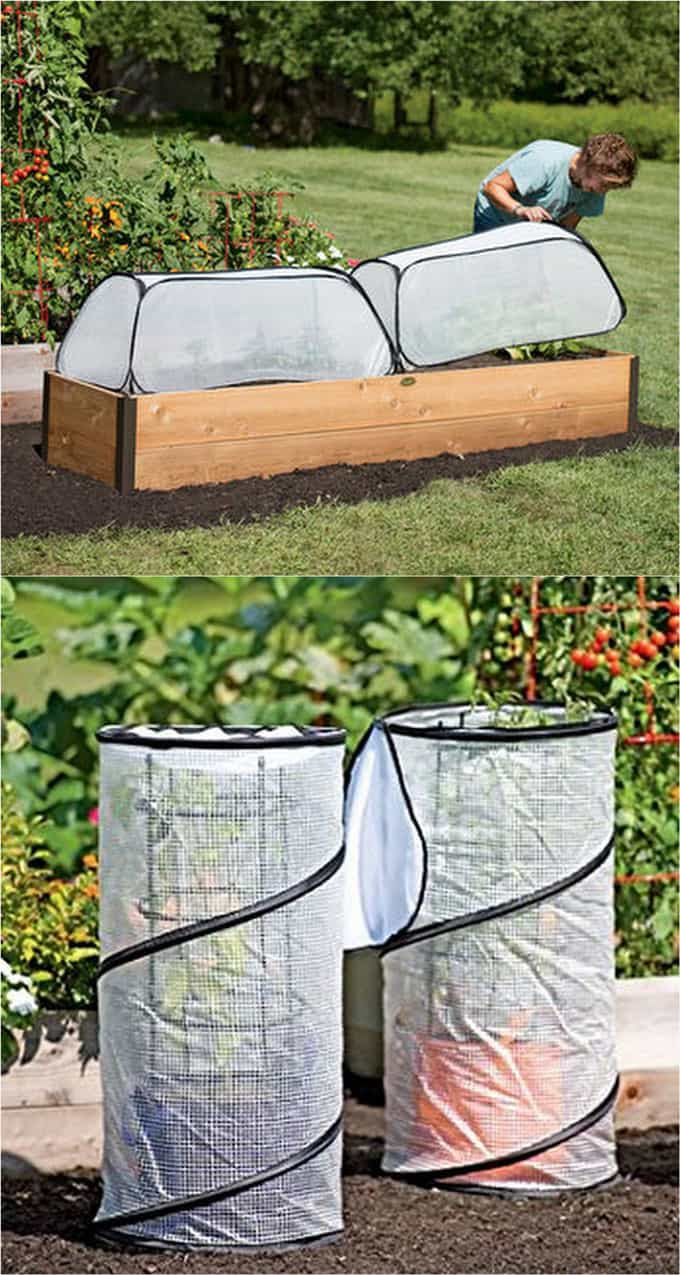 Collapsible Small Greenhouses