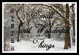 photo Winter small and wonderfuls_zpsq9ujsmdu.jpg