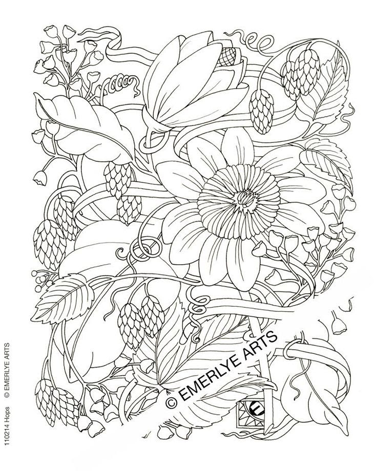 Free Coloring Pages For Adults Printable Hard To Color - Coloring And  Drawing