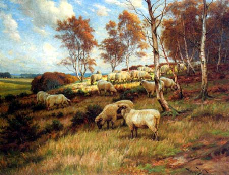 Fall Flock at Pasture