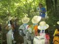 20080815-30夏キャン(山中野営場)森の訓練