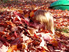Lorelei leaves