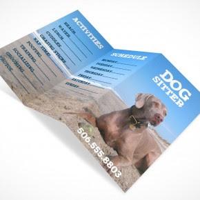 Download BROCHURE010 • Market Your PSD Mockups for brochure
