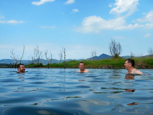 Cooling off in Lake Samsonvale