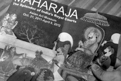 Asian Art Museum - Maharaja by raluistro