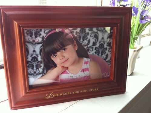 Hallmark Recordable Frame