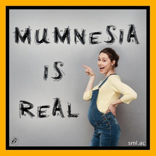 WHOOPEEEEE!  It's the end of the week and that means FUN FACT FRIDAAAAY!  Here's this weeks…   Mumnesia...