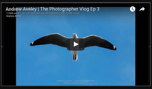 Vlog Ep 3 - Andrew Aveley | The Photographer