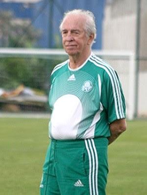 VALDIR JOAQUIM DE MORAES Palmeiras (Foto: Site Oficial do Clube)
