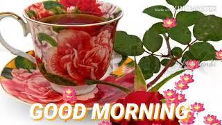 Good Morning Song Status Tamil Mp4 Hd Video Download Loadmp4com