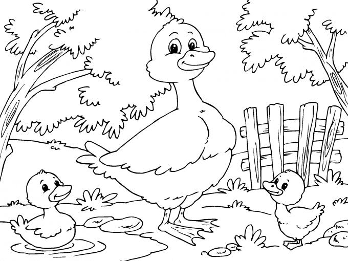 Pato Con Patitos Para Imprimir Paracolorearnet