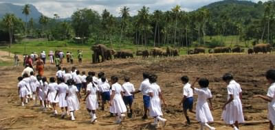 Schoolkids at the Pinnawela elephant orphanage, Sri Lanka