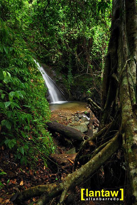Cabacan Falls Surroundings