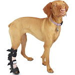 Fit Adjustable Dog Splint | Pet Foot Splint Helps Brace Lower Front and Rear Leg Injuries Small