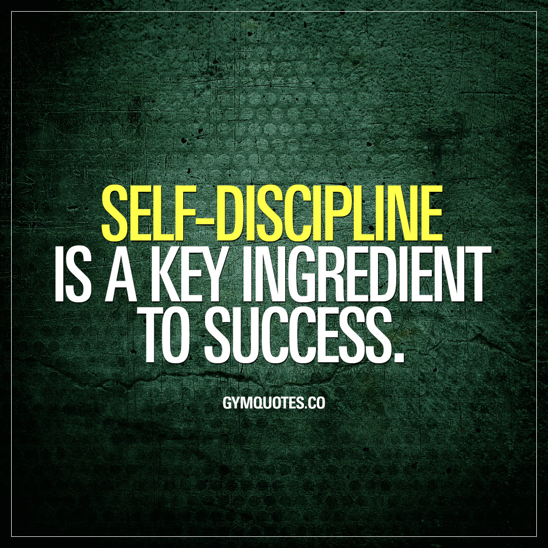 Self Discipline Quote Self Discipline Is A Key Ingredient To Success