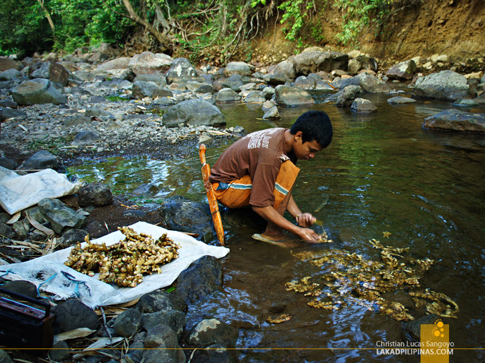 A Kid Washing Ginger at the Trail to Liktinon Falls at President Roxas, Capiz