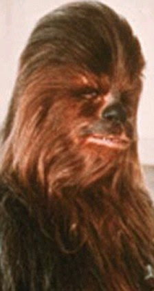 Here's looking at Chew: Star Wars favourite, wookiee Chewbacca