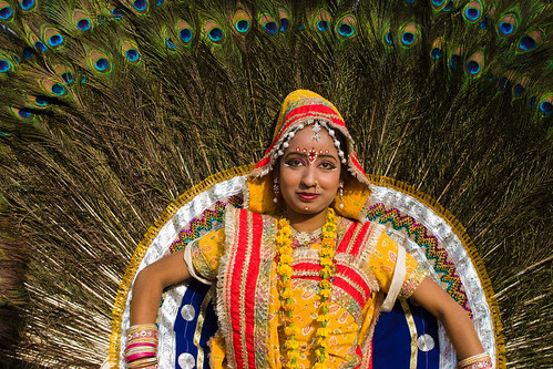 _MG_2275 Peacock the symbol of beauty - Elephant Festival - Jaipur India by © Cameron Herweynen.