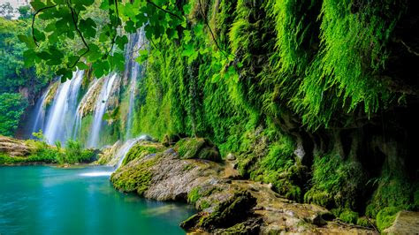 wallpaper tropical forest waterfall hd  nature