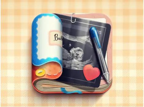 Baby-Bump-Journal