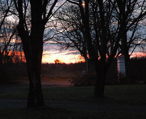 sunrise :. soloppgang