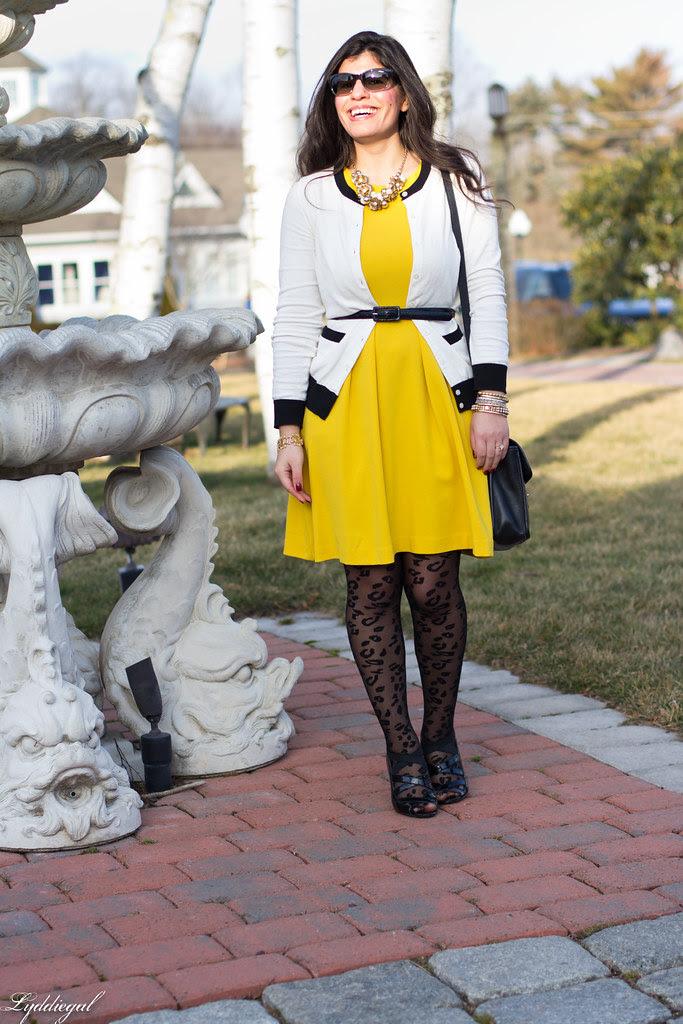leopard tights-1.jpg