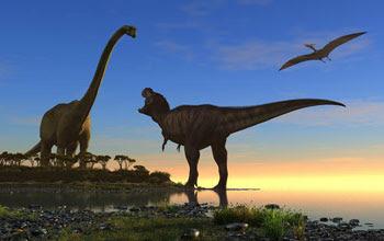 Illustration showing three types of dinosaurs