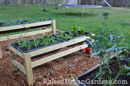 The start of my garden - Raised Urban Gardens
