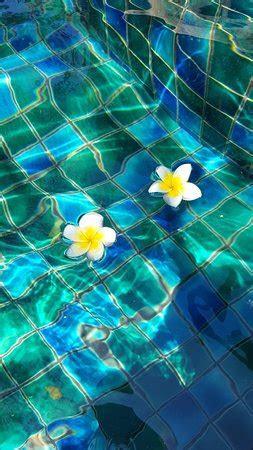 kata palm resort spa    prices