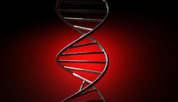 Doença de Pompe é um raro transtorno neuromuscular de origem genética que causa fraqueza muscular, entre outros quadros (Imagem: Free Images)