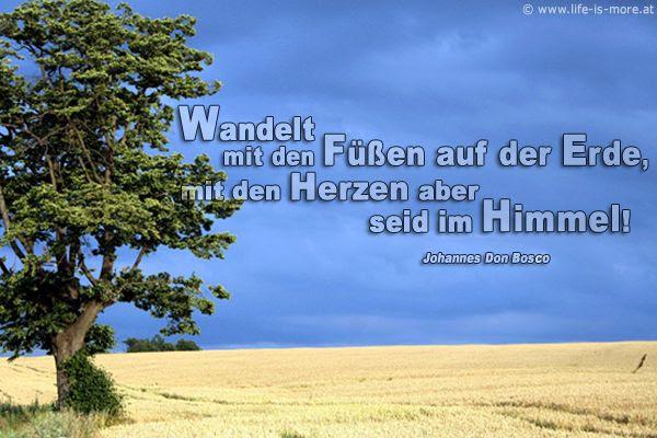 Geburtstagsw nsche bibel w nsche f r geburtstag - Christliche hintergrundbilder ...