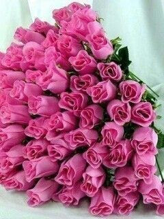 Pink roses for my love | repinned by  www.blucats.com