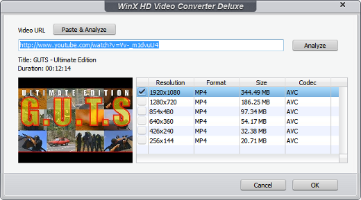 MattHawkins - How To Download And Convert YouTube Videos (WinX HD)