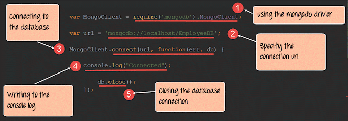 Node.js MongoDB Tutorial with Examples