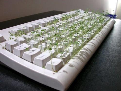 4 funny-chia-pet-keyboard