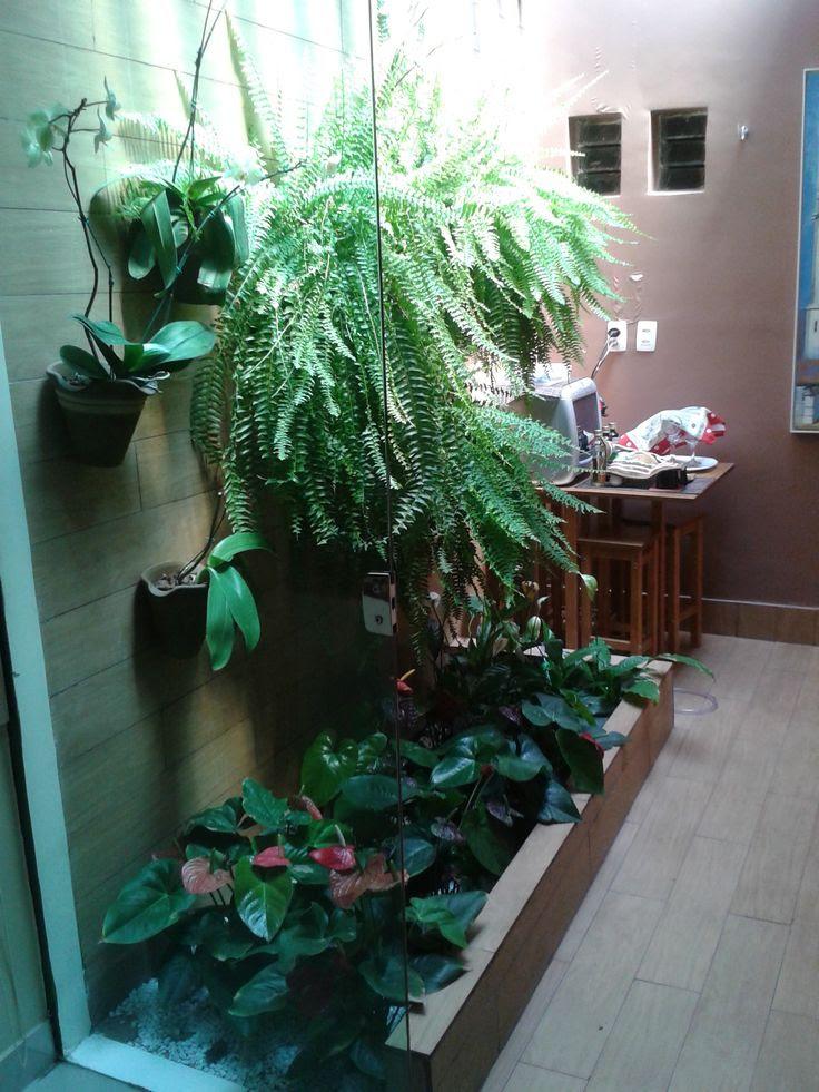 Pinterest Indoor Garden Ideas Photograph Indoor Garden Ide