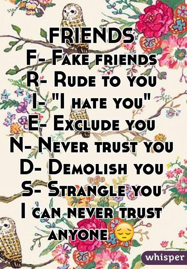 Friends F Fake Friends R Rude To You I I Hate You E Exclude You N