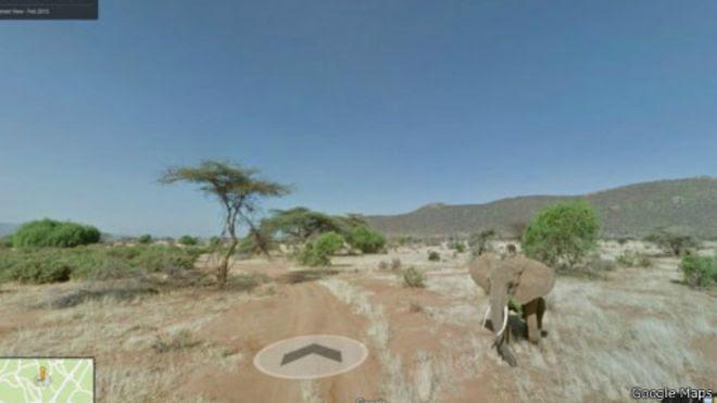 Mbuga ya wanyama ya Samburu