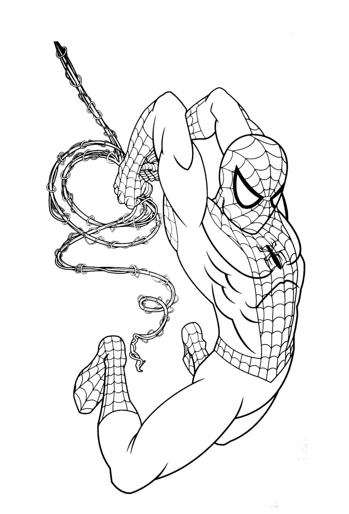 spiderman homecoming ausmalbild  cartoonbild