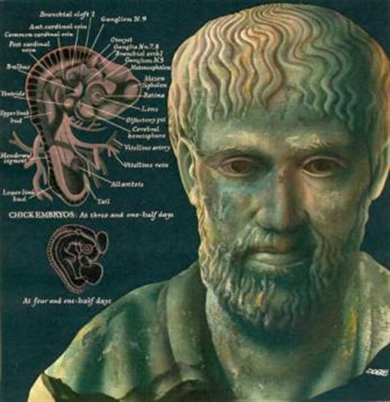 Αποτέλεσμα εικόνας για father of biology aristotle