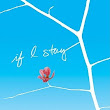 The Beautiful World of Books: If I Stay - Ayesha