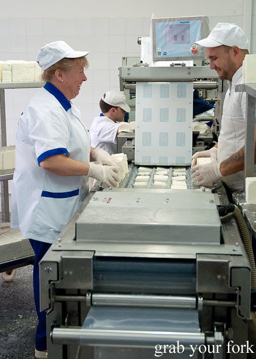 sealing sirene white brined cheese at dairy factory, dalbok izvor, bulgaria