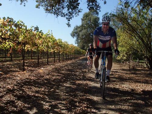 Rich Giro d' vino lodi wine 2012_0148 copy copy
