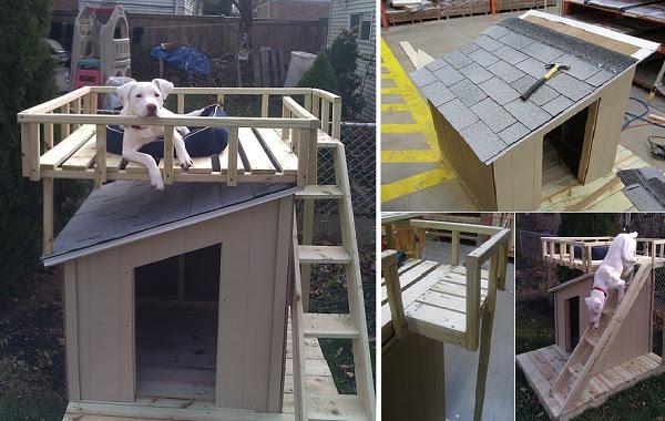 10 Creative Dog House Design Ideas Daily Feed