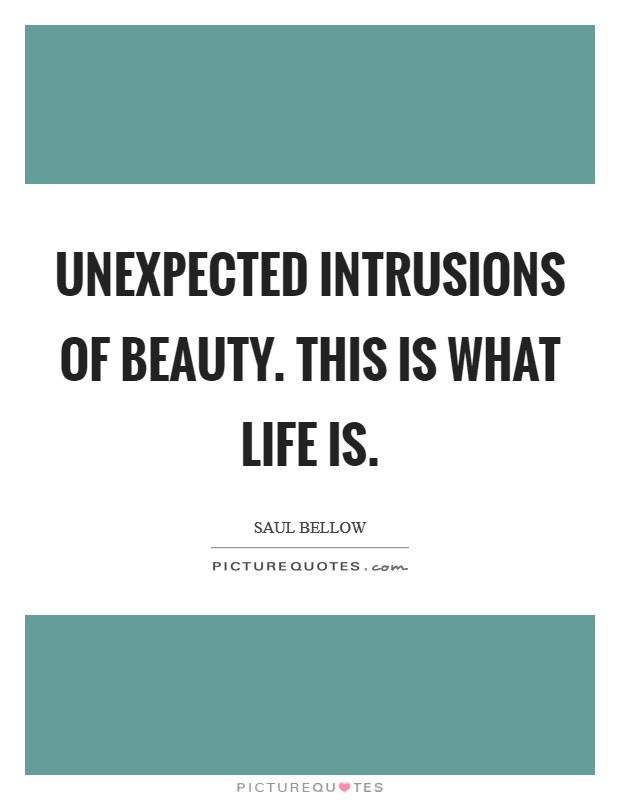 Unexpected Intrusions Of Beauty This Is What Life Is Picture Quotes