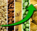 All_commodities_up_photo_02.jpg